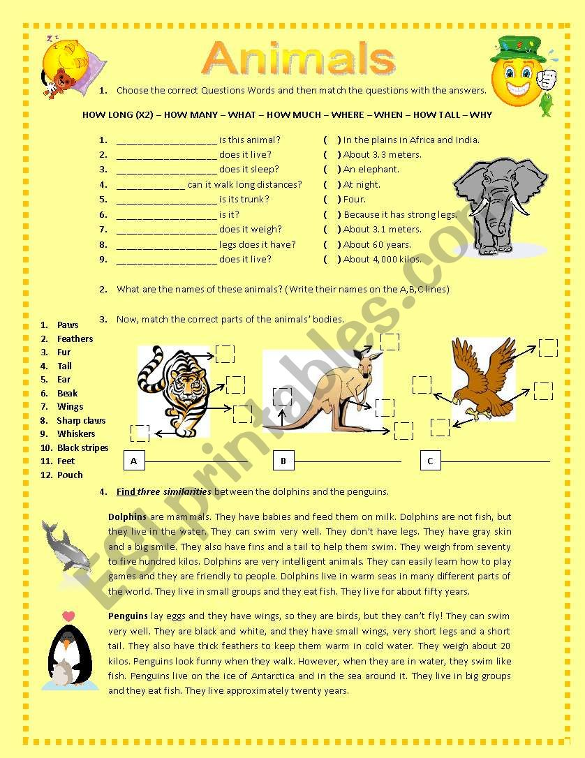 ANIMALS AND THEIR BODY PARTS worksheet