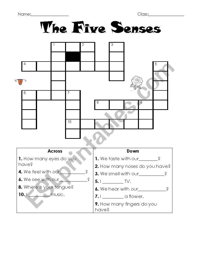 the five senses crossword esl worksheet by samuy. Black Bedroom Furniture Sets. Home Design Ideas