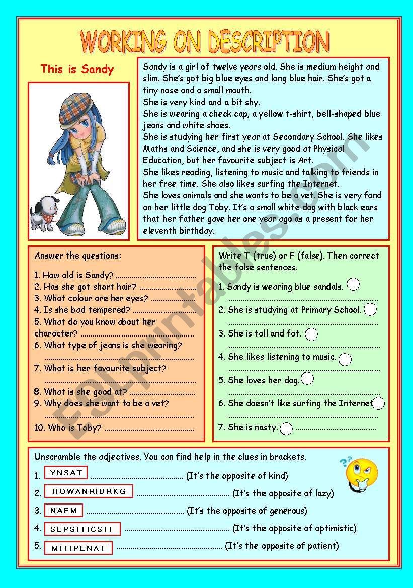WORKING ON DESCRIPTION worksheet