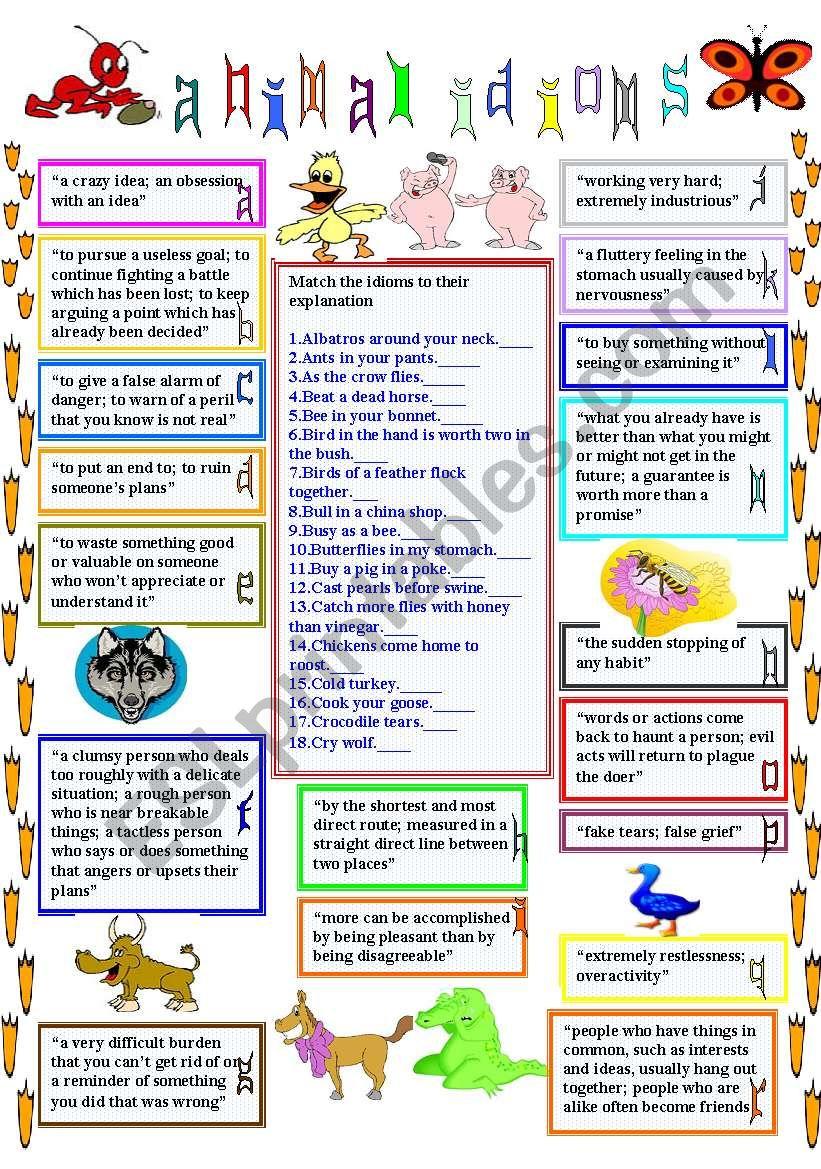 animal idioms 1 worksheet
