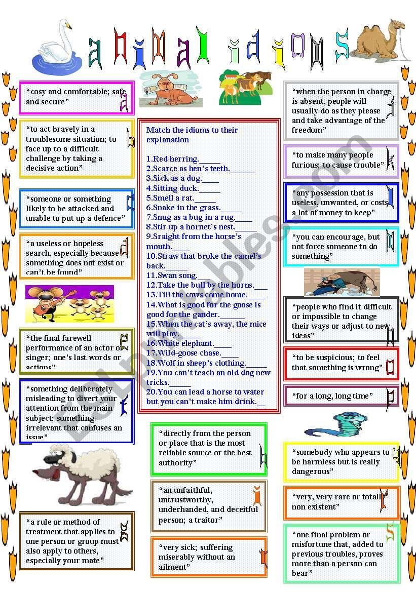 animal idioms 4 worksheet