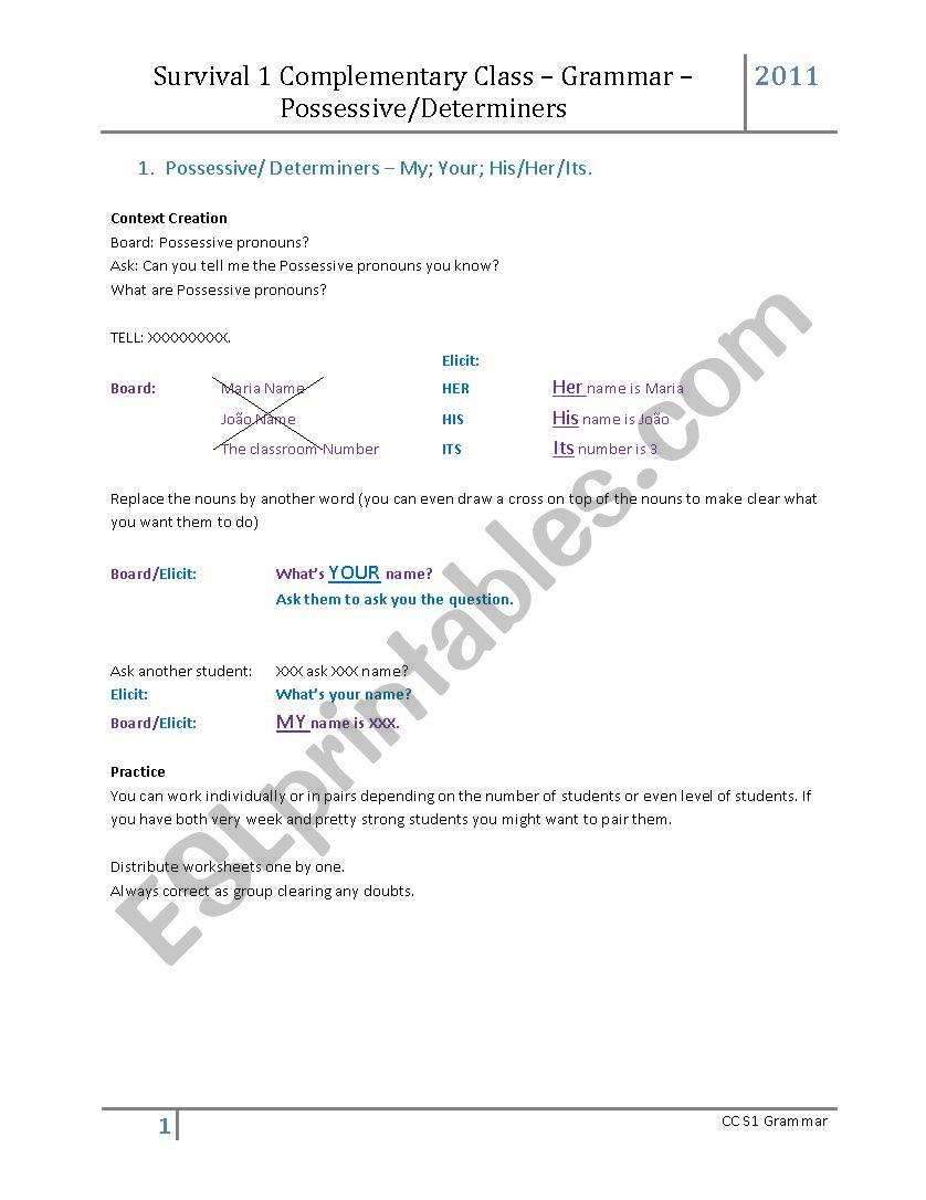 Possessive Determiners worksheet