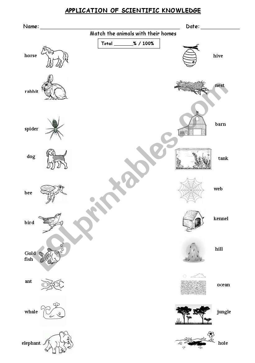 animal homes esl worksheet by cobbs. Black Bedroom Furniture Sets. Home Design Ideas