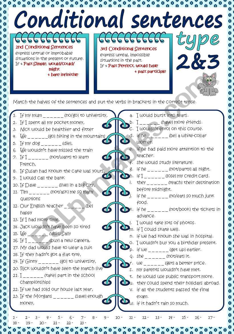 Conditional sentences - Type 2&3 (B&W + KEY included)