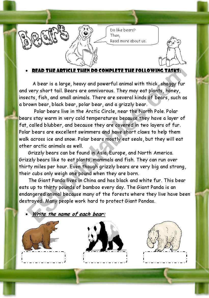 Bears ( 3 pages / + Compare & Contrast Strategy  )