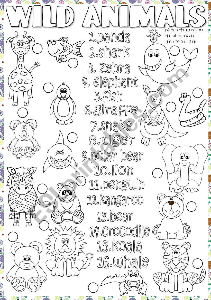Wild animals worksheet