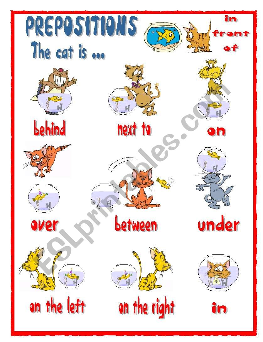 PREPOSITIONS- The cat is ... worksheet