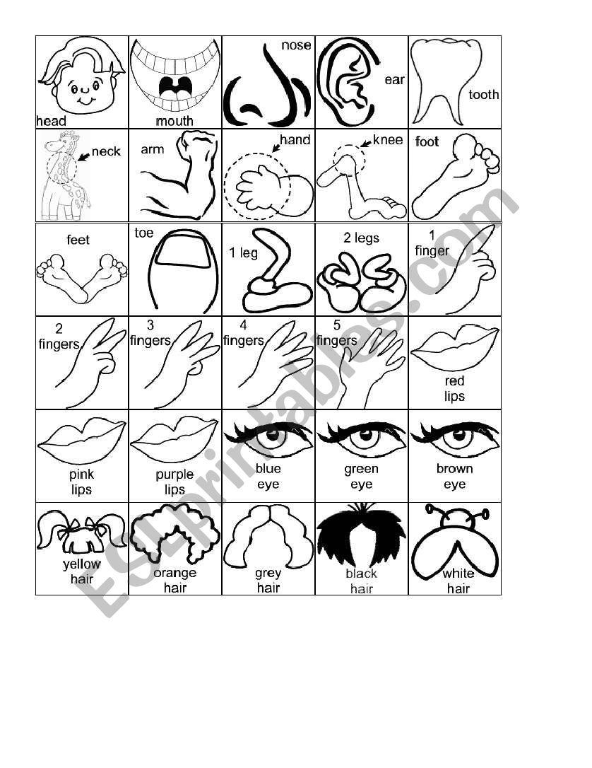 body parts cartoons worksheet