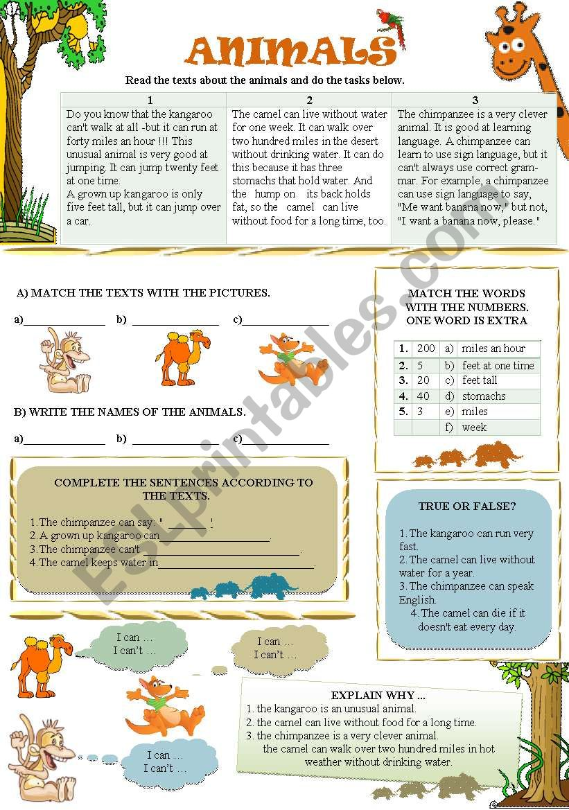 READING TEXTS ABOUT ANIMALS worksheet