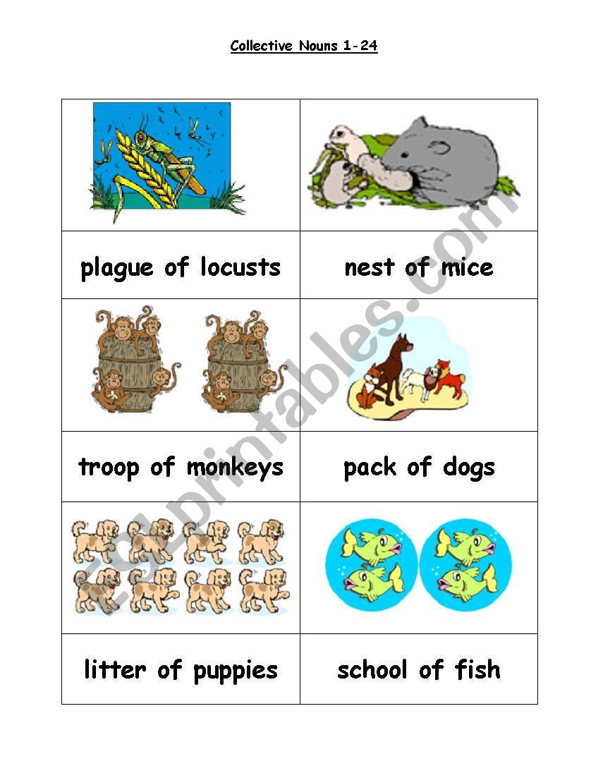 Collective nouns 1 to 24 worksheet