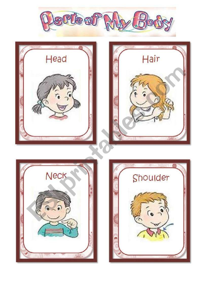 Parts of the body - flashcards (1/2)