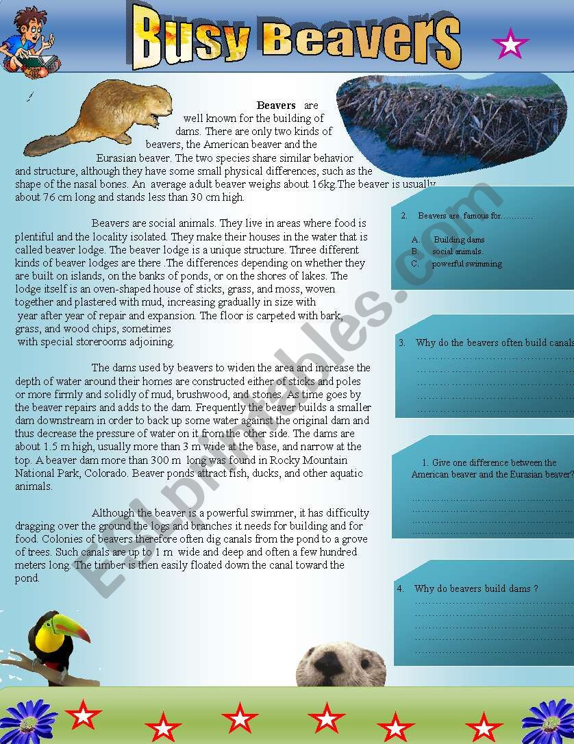 Busy Beavers: Reading comprehension