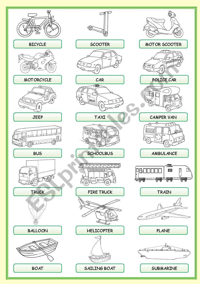 MEANS OF TRANSPORT PICTIONARY worksheet