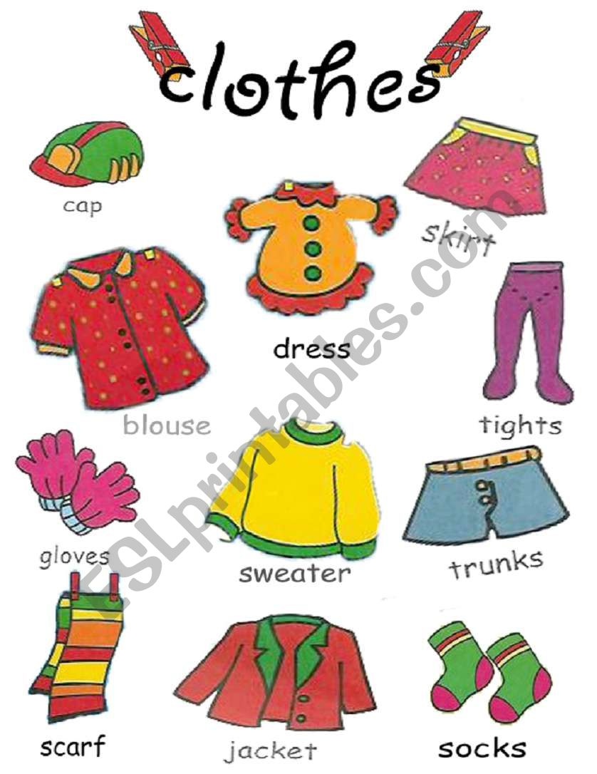 clothes pictionary 2/2 worksheet