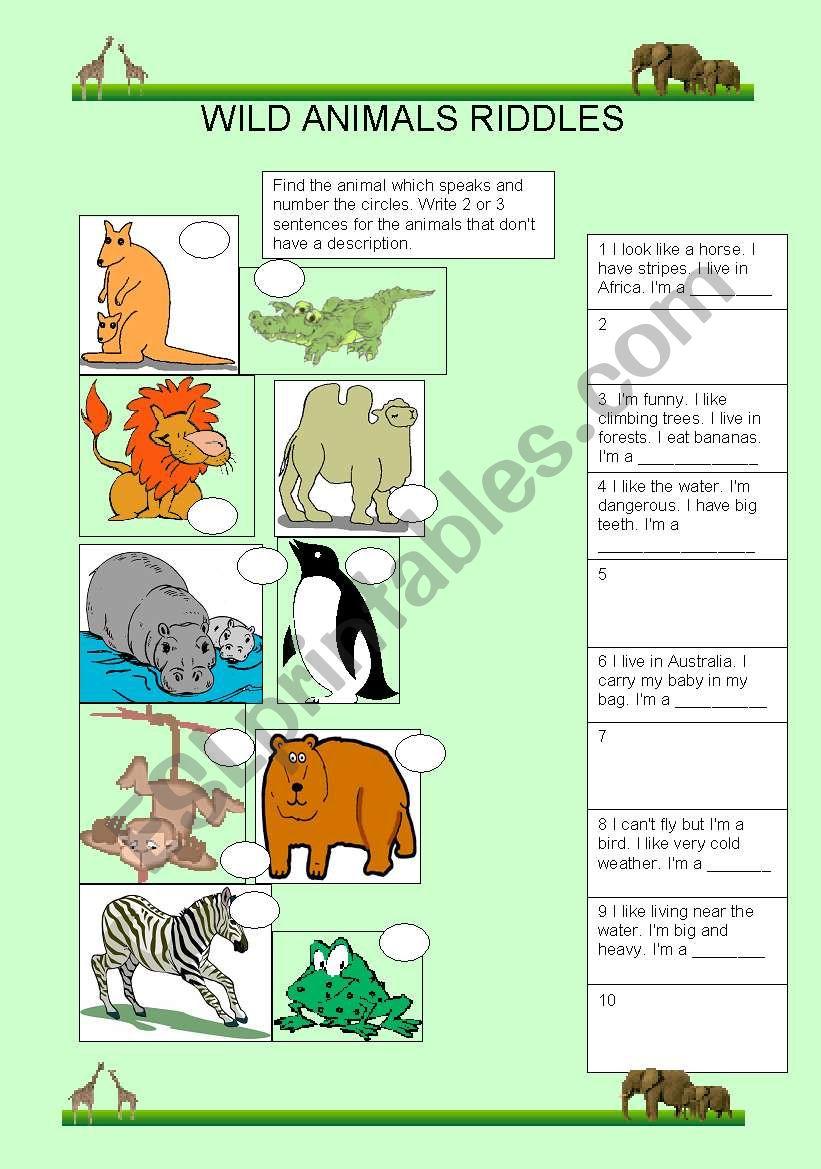 WILD ANIMALS RIDDLES worksheet