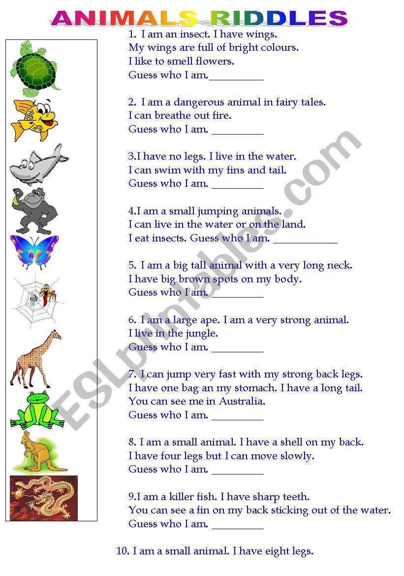 Animal riddles worksheet