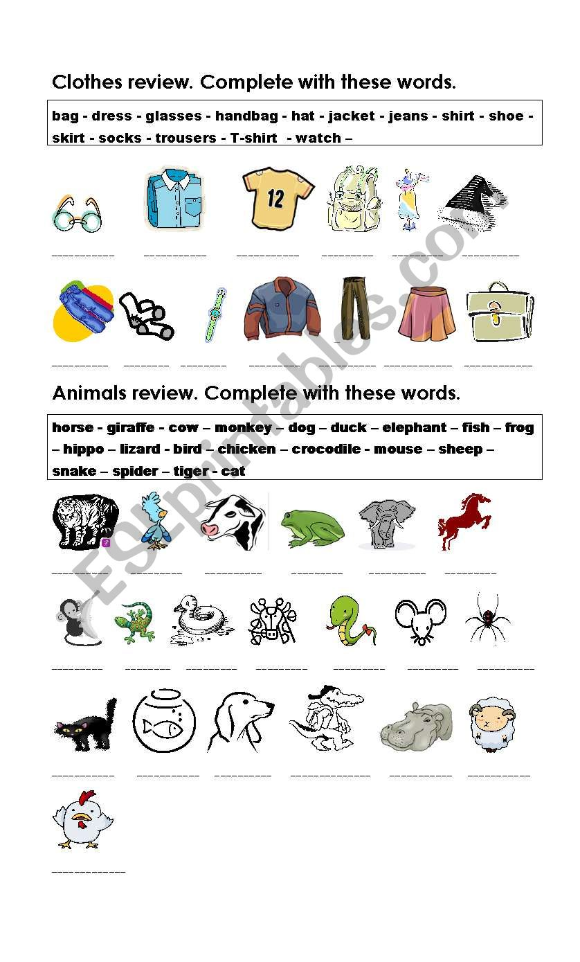 Clothes and Animals Review worksheet