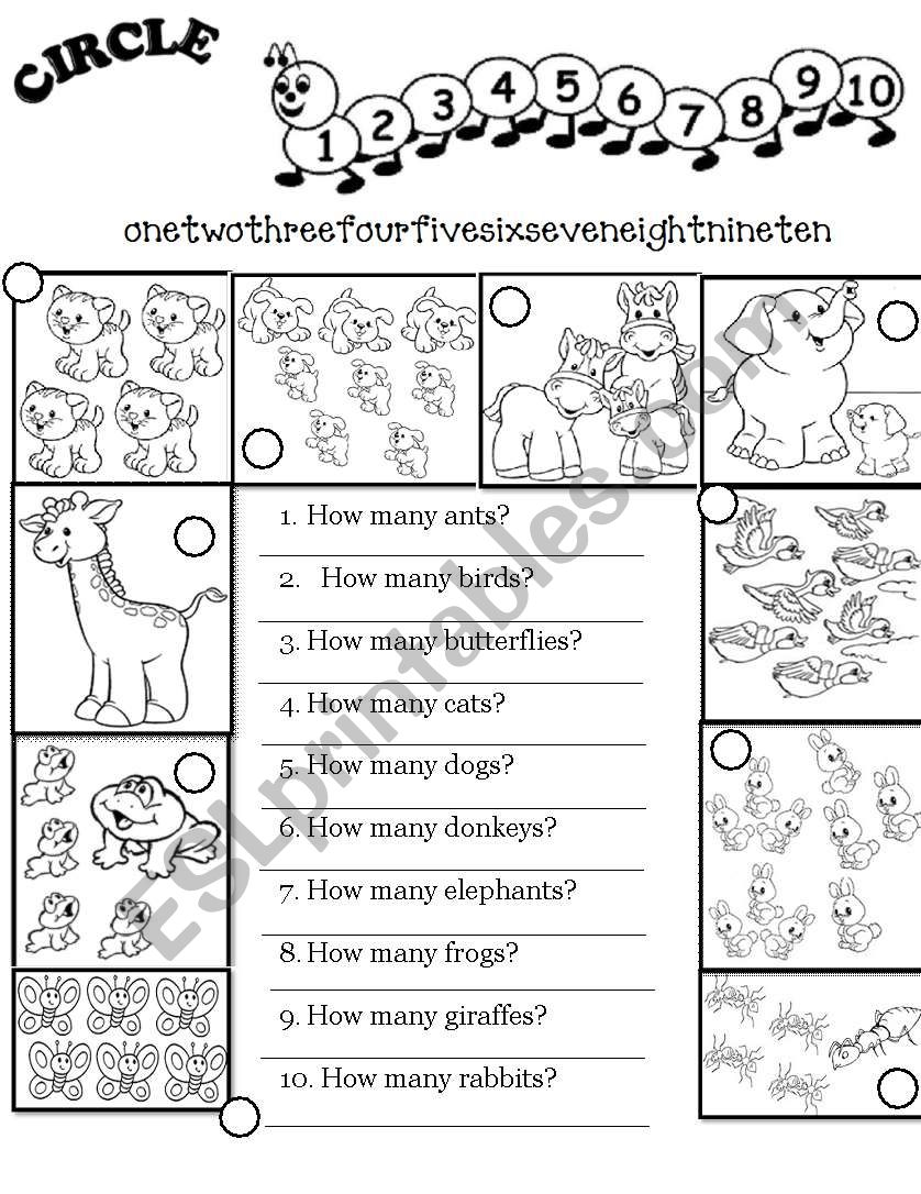 Numbers 0-10 + How Many...? (worksheet)