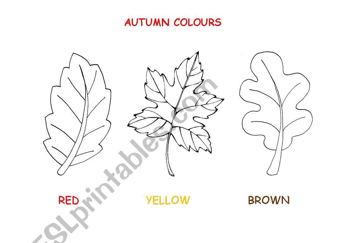 Autumn leaves - ESL worksheet by lisimon