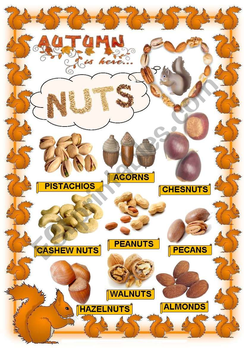 Nuts worksheet