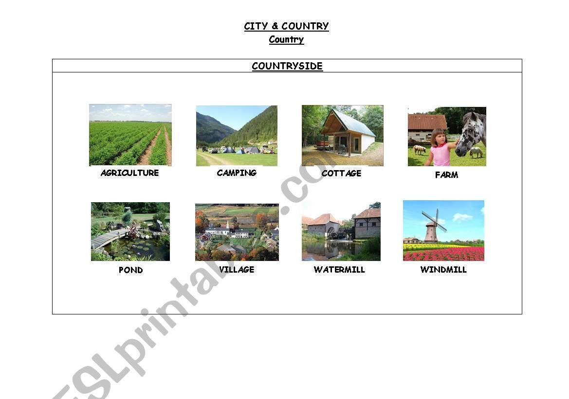 CITY & COUNTRY. COUNTRYSIDE worksheet