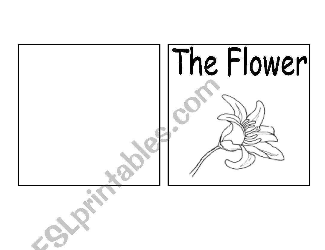 Parts of a Flower Book  worksheet