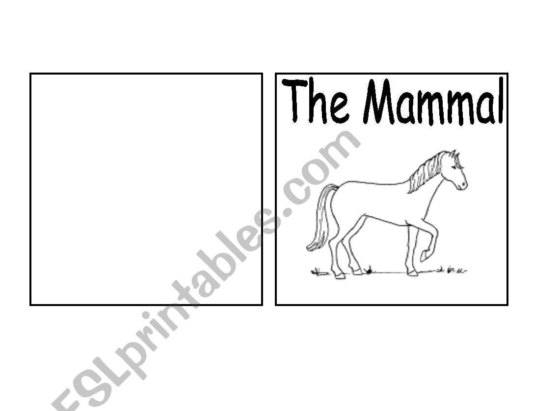 Parts of a mammal book (horse)