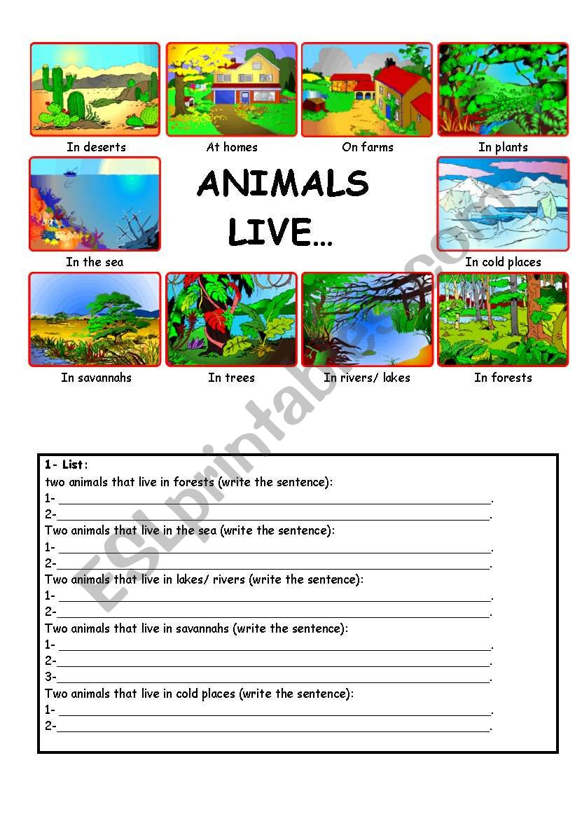 Animals live... worksheet