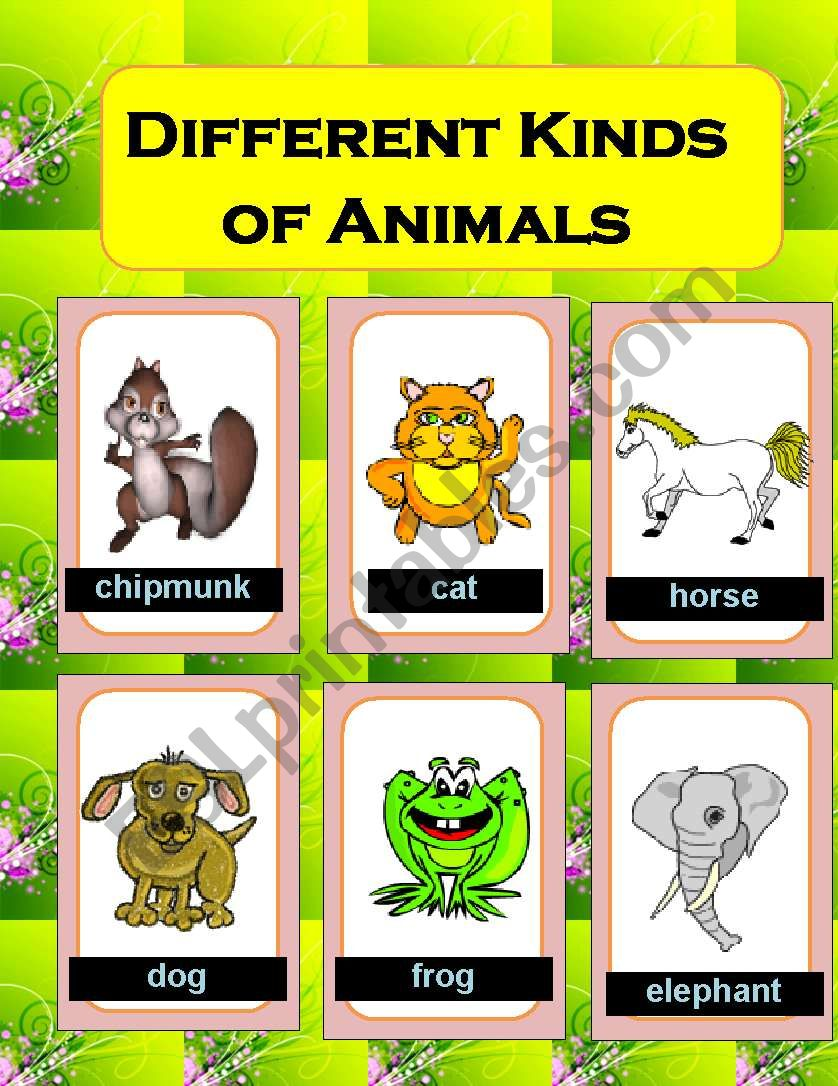 Different Kinds Of Animals Esl Worksheet By Colita