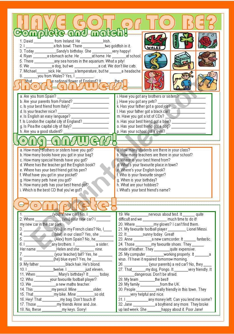 Have Got or To Be? worksheet