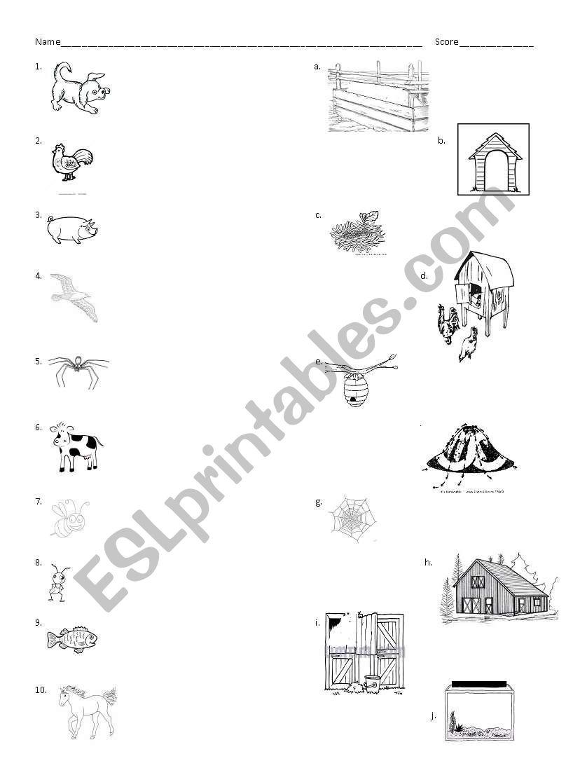animal and their homes esl worksheet by ailse27. Black Bedroom Furniture Sets. Home Design Ideas