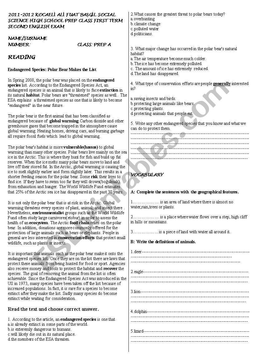 exam for prep class - ESL worksheet by cokamak