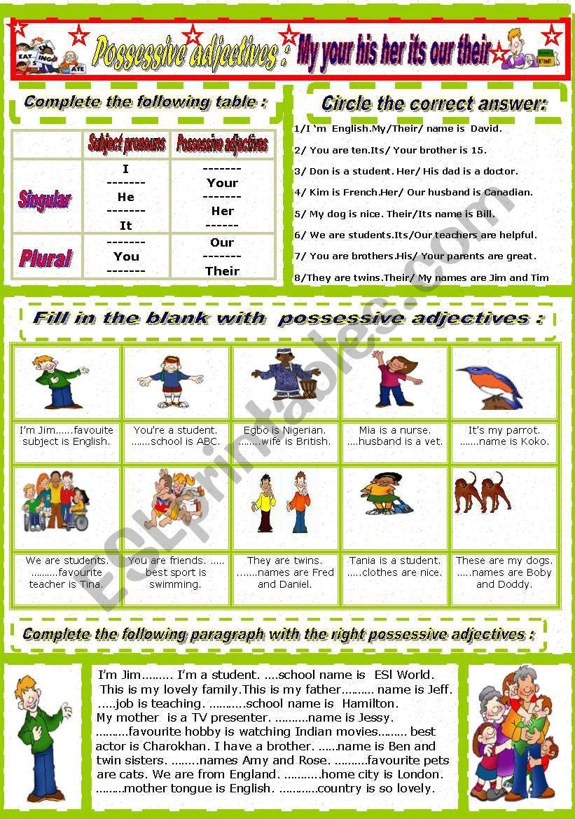 Possessive adjectives worksheet