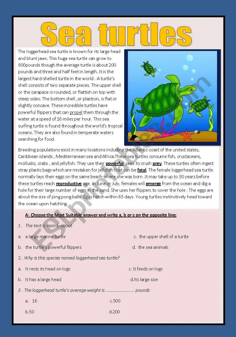 Reading comprehension ( animals)