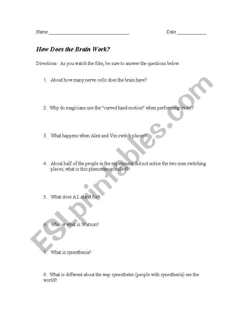 Nova How Does The Brain Work Worksheet Nova How Does The Brain