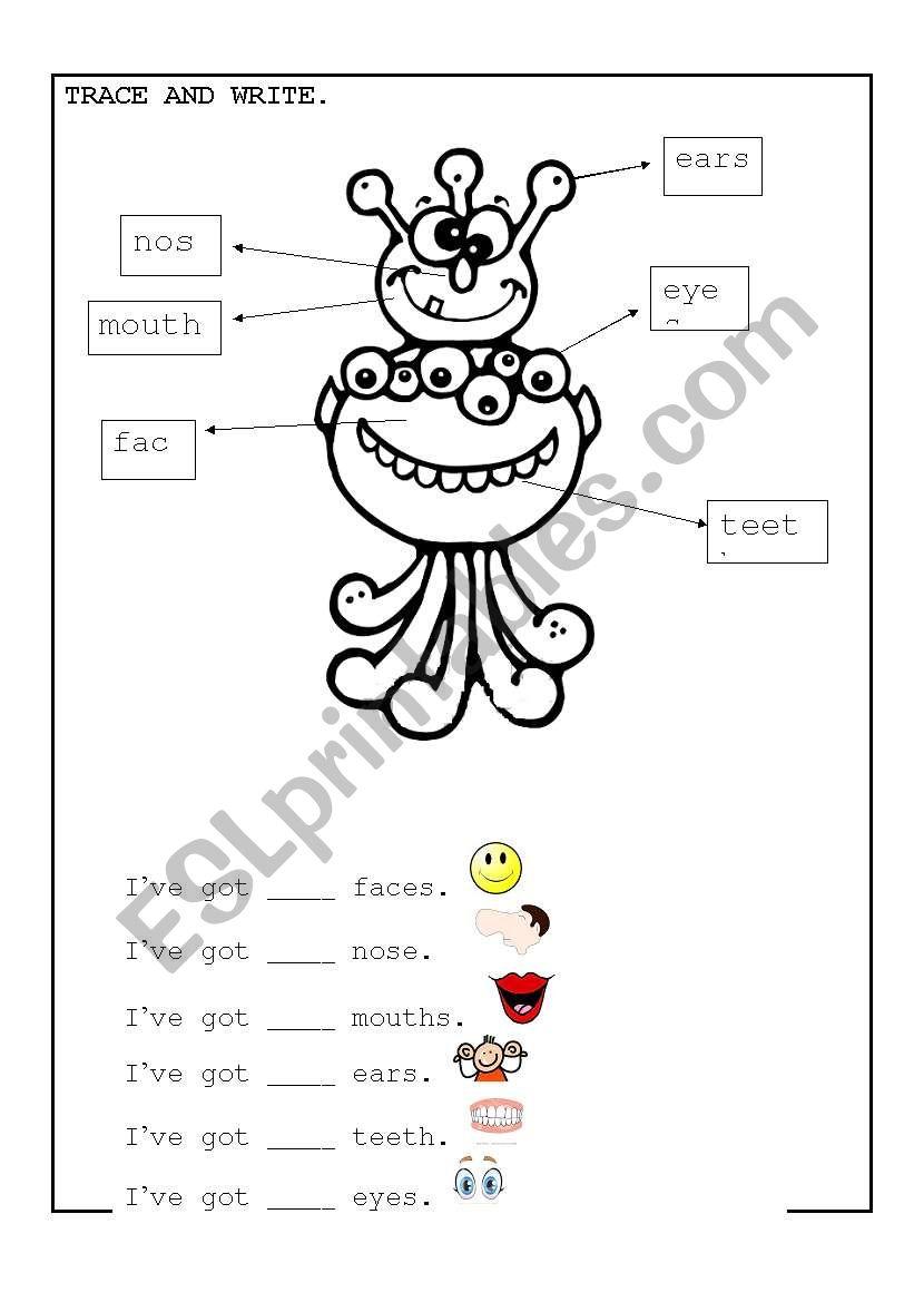 worksheet Parts Of Face Worksheet english worksheets parts of face worksheet