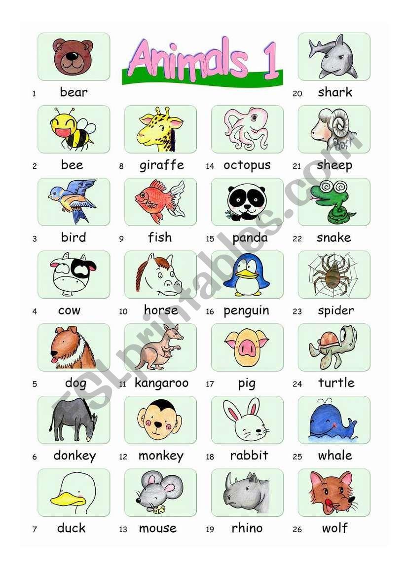 Pictionary***Animals 1 worksheet