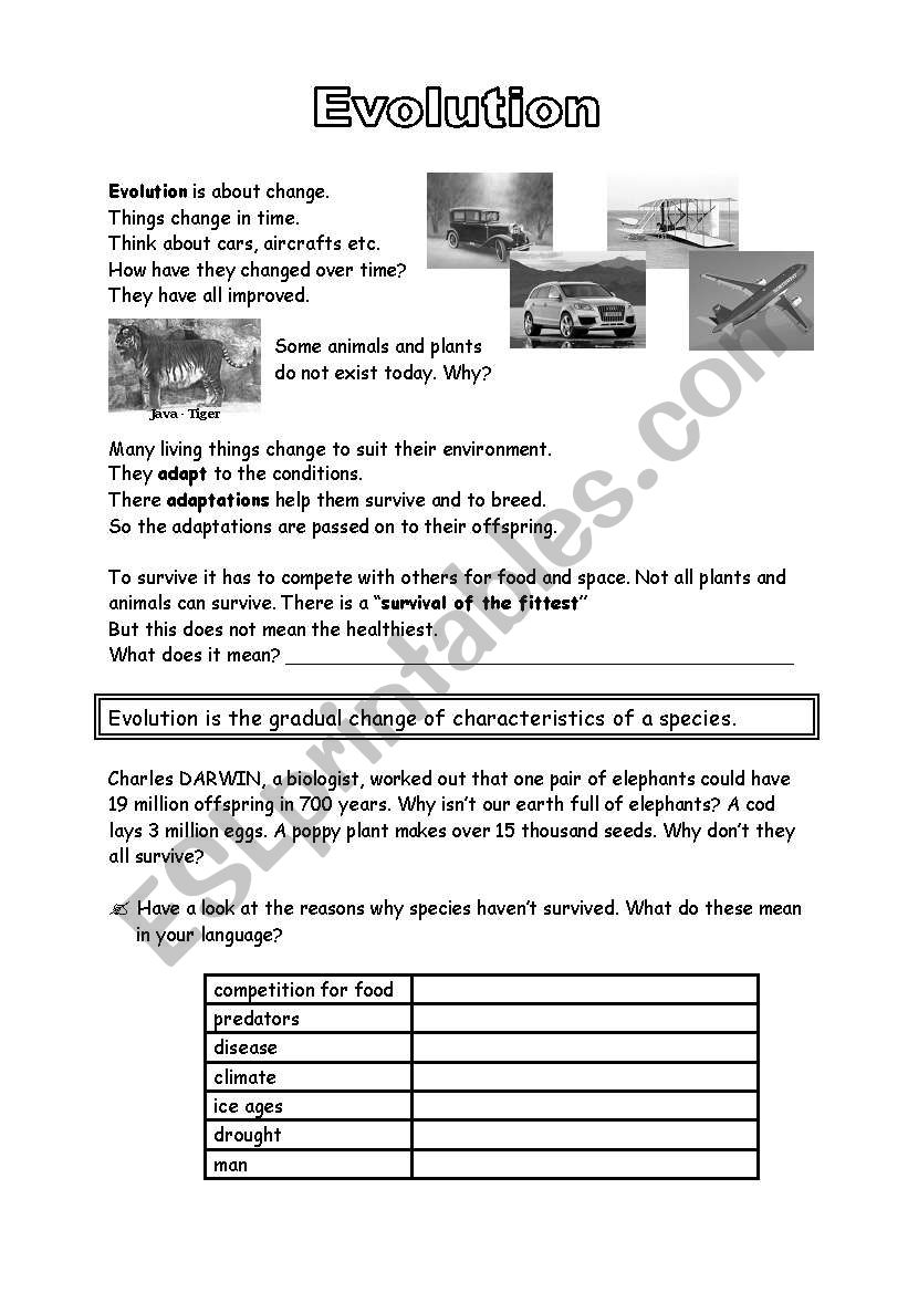 in addition south america worksheets for middle – yaella co in addition Biochemical Evidence For Evolution Worksheet   Oaklandeffect together with ecology worksheets for high together with 12 Best Images of Evolution Worksheet Answers   Evolution of Stars also Evidence Of Evolution Worksheet Answer Key Luxury Homo Sapiens in addition Evolution by Natural Selection Worksheet – Fronteirastral in addition Worksheet on evolution  using bicycles as a metaphor  before together with Evolution Worksheets For High   Free Printables Worksheet moreover great depression worksheets for middle – jasoncornish co also English worksheets  Evolution further Printable Biology Worksheets   Anatomy  Physiology  Botany  Zoology moreover  together with Agreeable Worksheets High Biology About Evolution Worksheets furthermore High Biology Worksheets High Biology Ge ics Lesson together with Media Literacy Lesson Middle Body Image Worksheets Activities. on evolution worksheets for middle