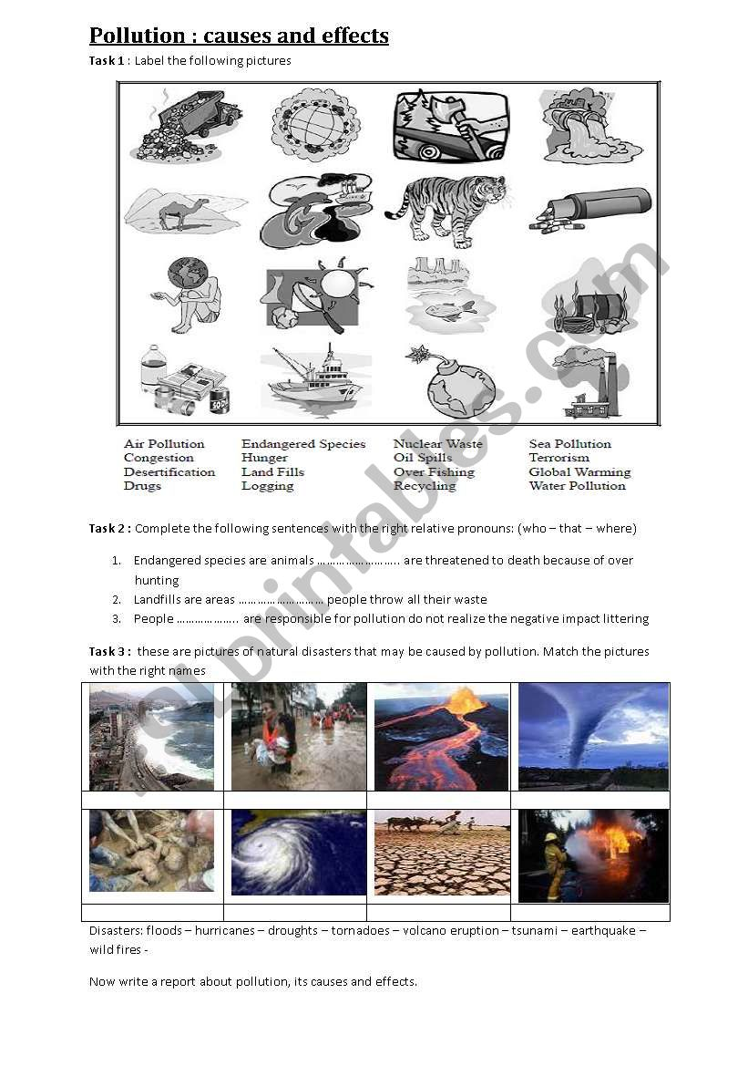 pollution: causes and effects worksheet