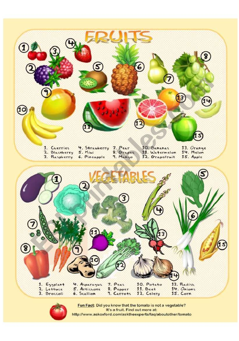 Fruits & Vegetables - Picture Dictionary