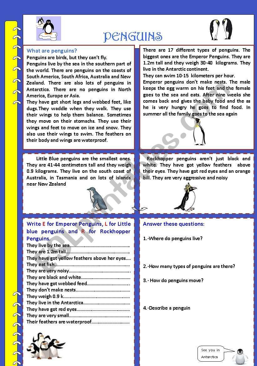 PENGUINS worksheet