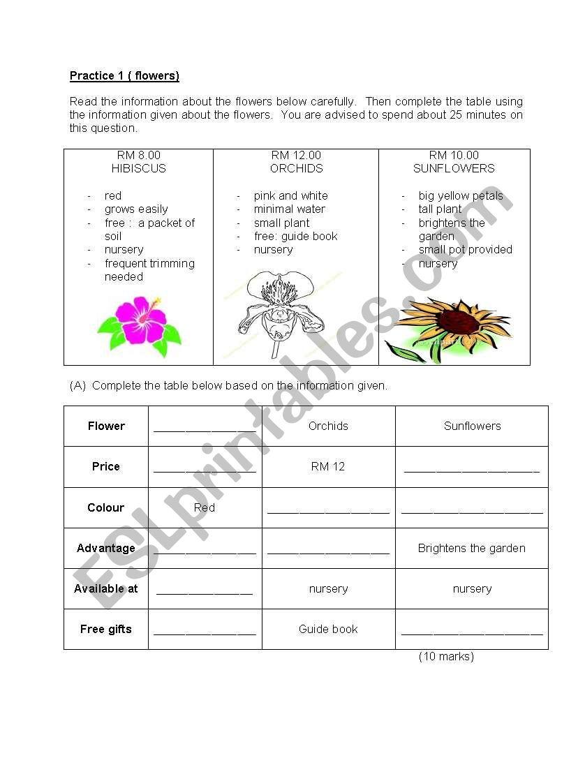 English: Information Transfer worksheet