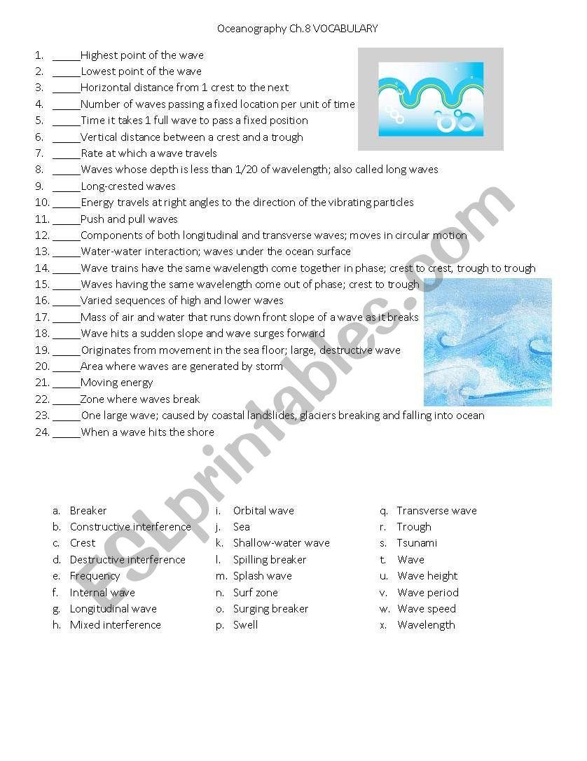 Oceans Wave Vocab worksheet