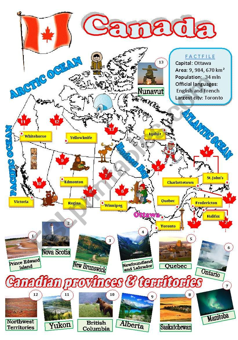 A map of Canada worksheet