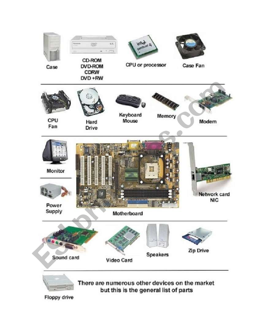 Basic Computer Parts and Functions - ESL worksheet by joannazach