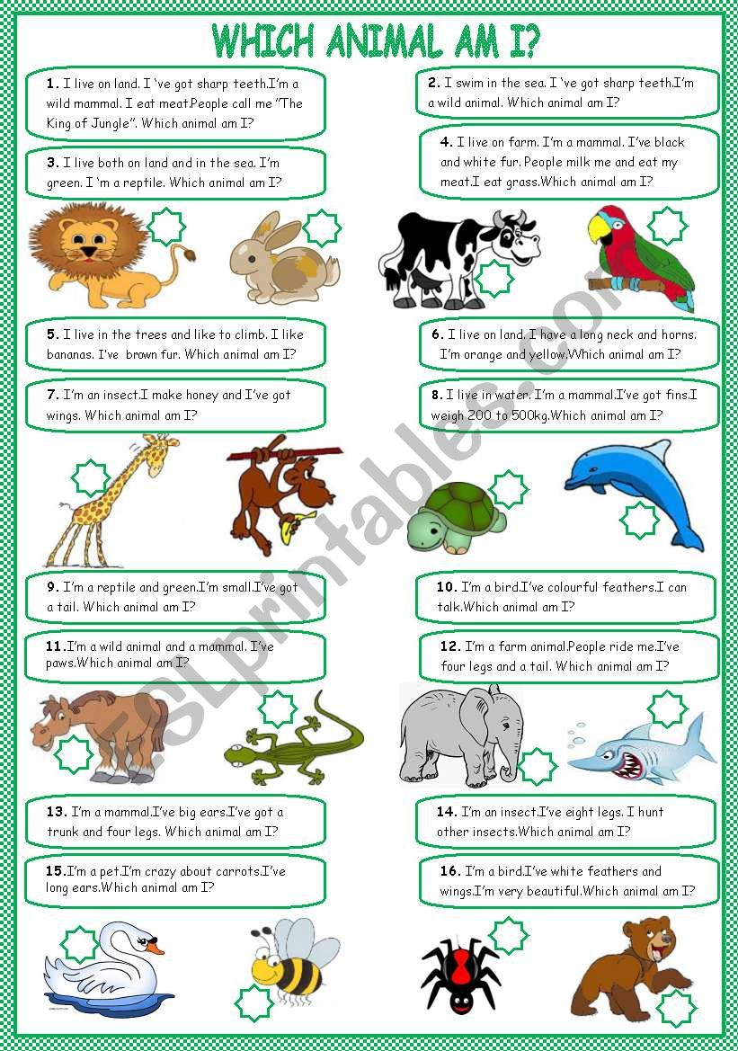 Which animal am I? worksheet
