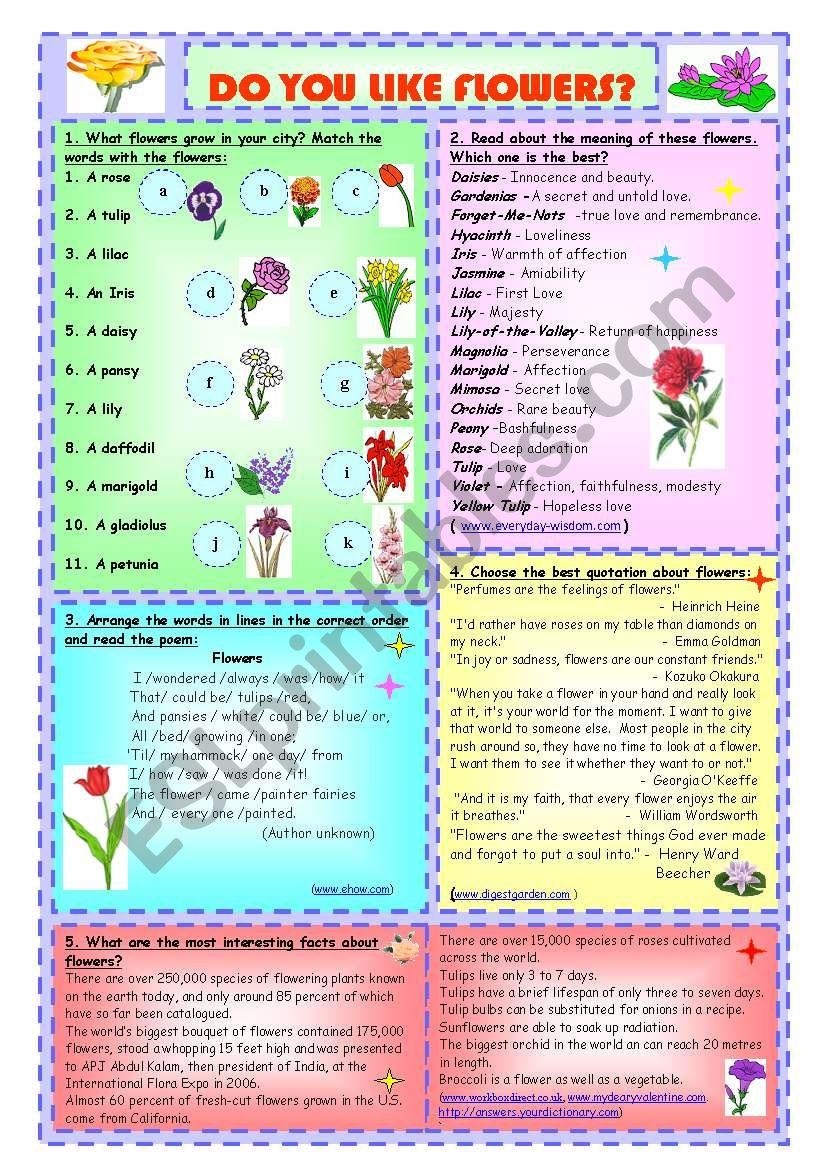 Do You Like Flowers? worksheet