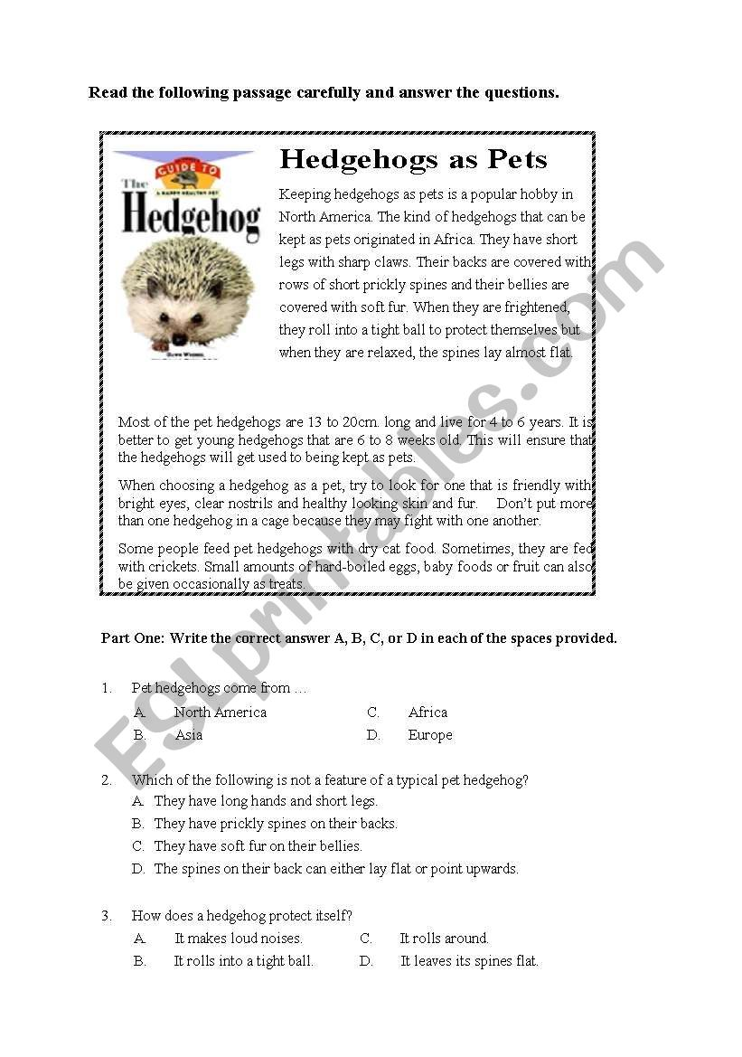 Hedgehogs as Pets worksheet