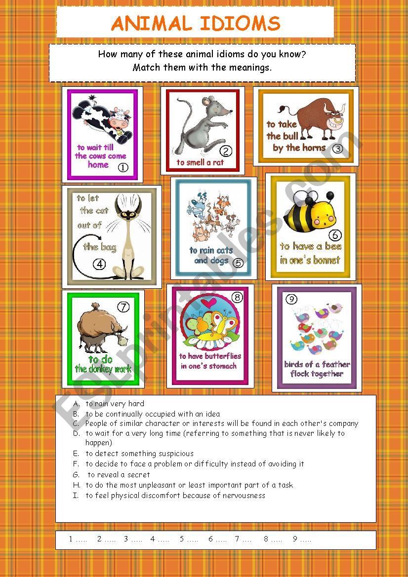 ANIMAL IDIOMS worksheet