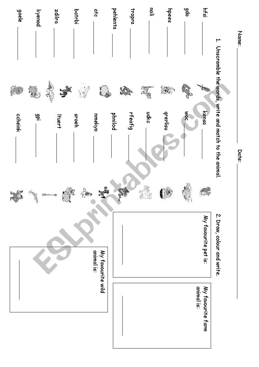 Animals Unscramble And Draw Esl Worksheet By Silvanacoelho